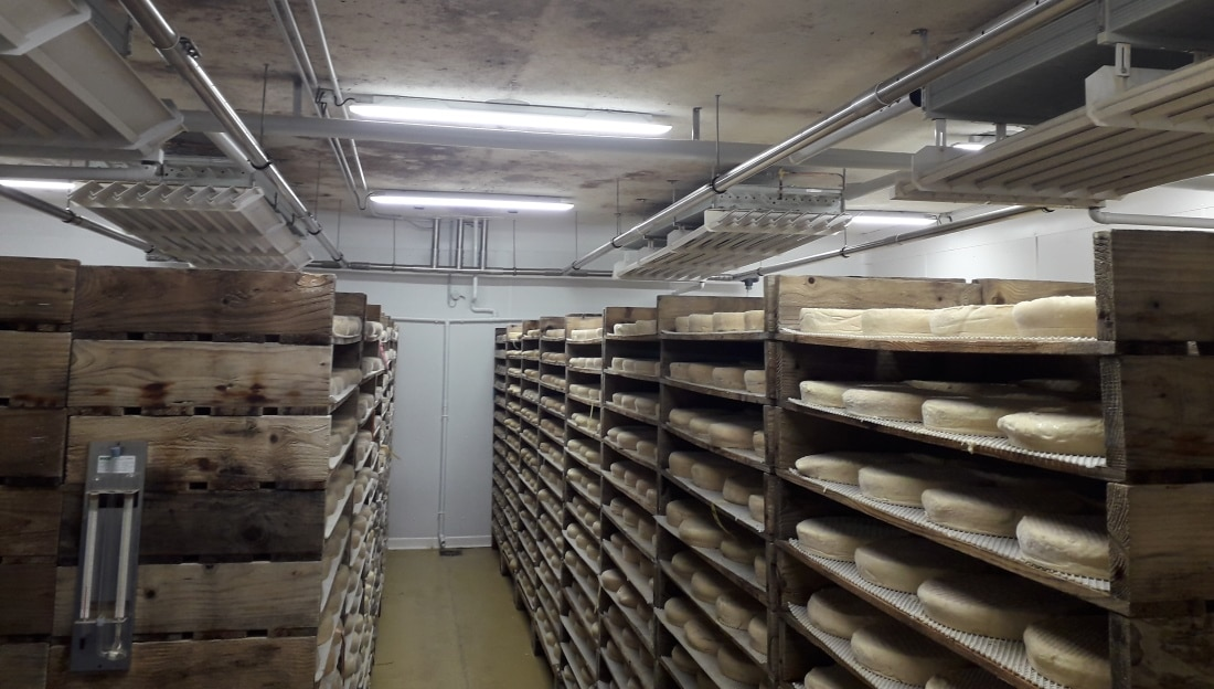 Humidification des fromageries